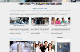 Dynamic Home Page Design - Professional Web Design and Development Project by Revelation BD for EUROZONE GROUP