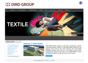 Home Page - Professional Web Design and Development Project by Revelation BD for DIRD Group