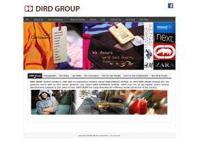 About Us Page - Company Page - Professional Web Design and Development Project by Revelation BD for DIRD Group